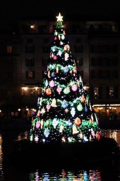 Christmas Tree DisneySea